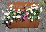 Blumentopf beschriftet, Cortenstahl